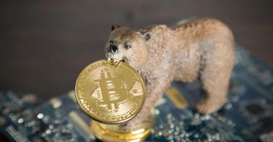 Биткоин - король медвежьего рынка?
