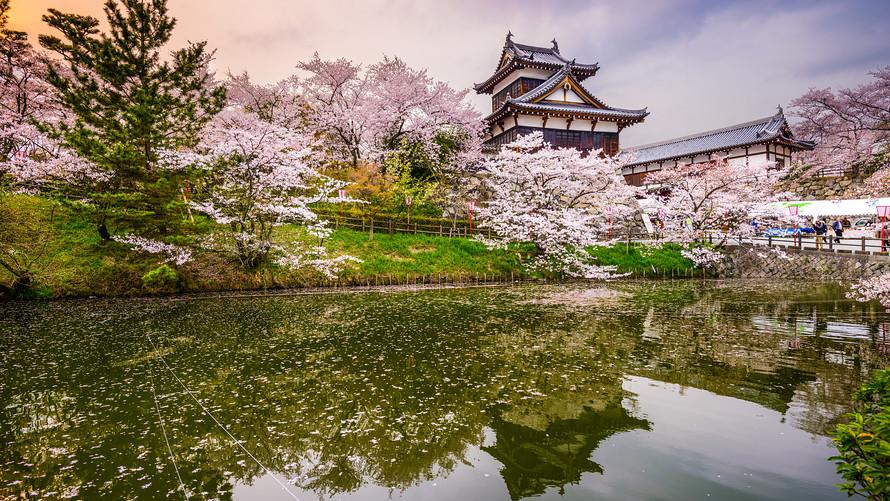 Японские акции растут на оптимизме в отношении американской экономики